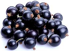 Photo of Blackcurrants