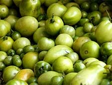 Photo of Green Tomatoes