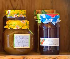 Close-up photograph of jams